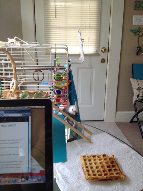 Maintaining line-of-sight with the waffle at all times is very important to achieve the fastest possible arrival.