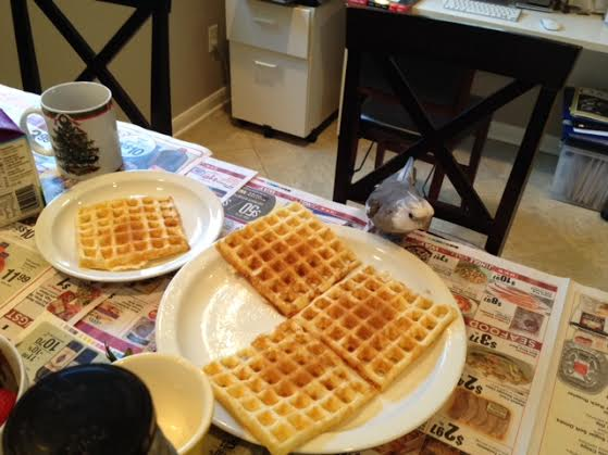 Hmmm. This plate is quite large and contains three waffles, but the one next to it is much smaller and only has one waffle on it.
