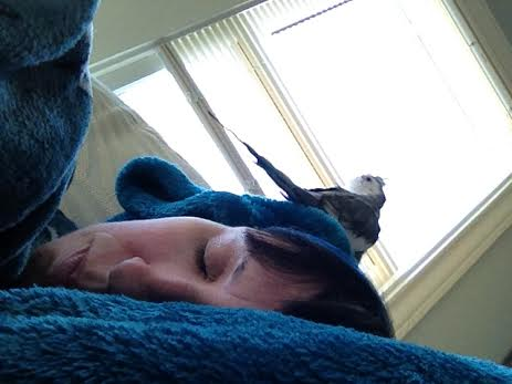 "Clearly Mom is ""under the weather"" again. I'll just sit on her head - that always helps."