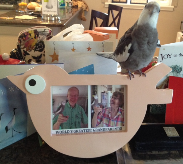 Pearl offers his grandparents the very best Anniversary present he could find - himself!