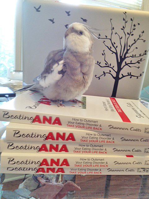 Looks like Mom needs my help again. I will just pose and look very feathery and fluffy so she will sell more books.