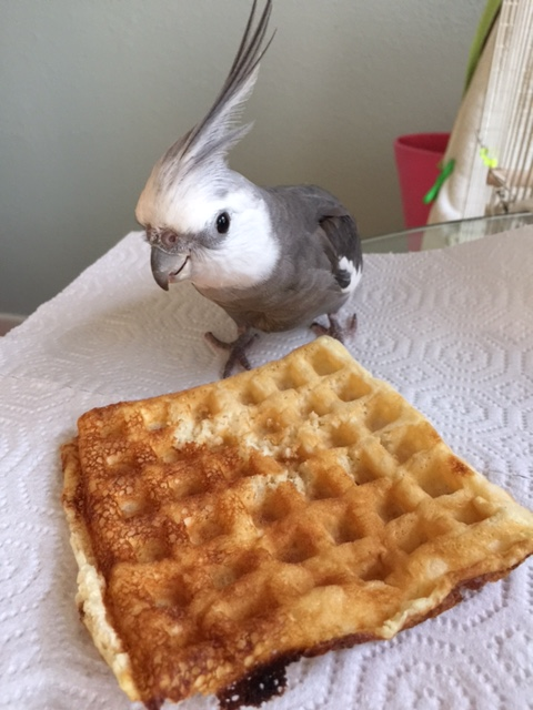 """What do you mean, """"share?!"""""""