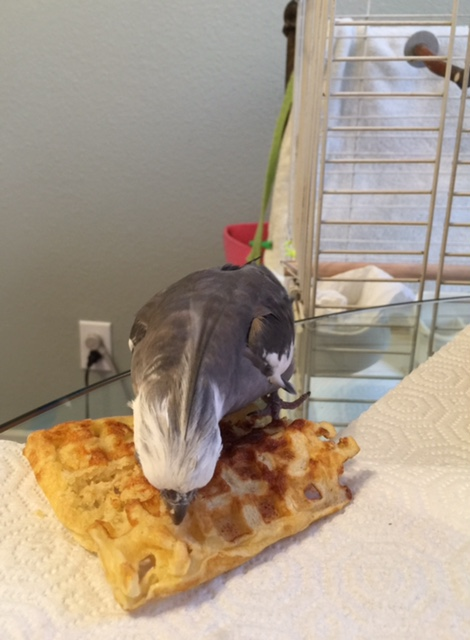 Yup - waffles are always even tastier at dinner.