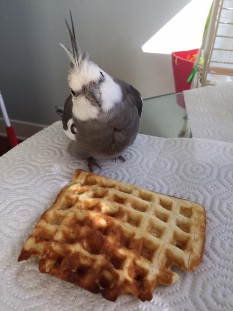 Mom, I'm really hungry....