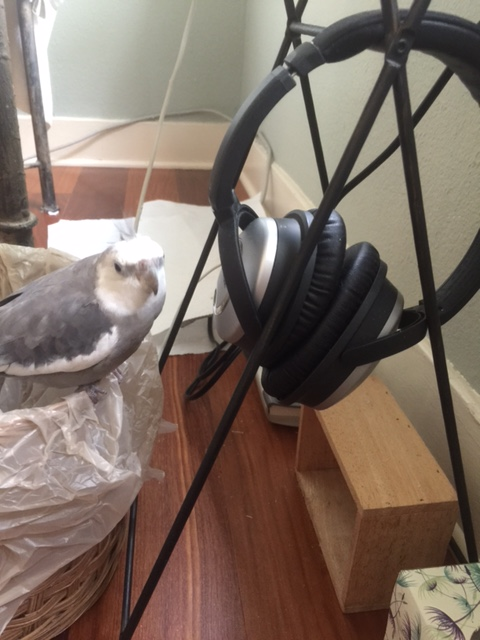Mom, do you mind? I'm about to record a podcast of my original vocal music.