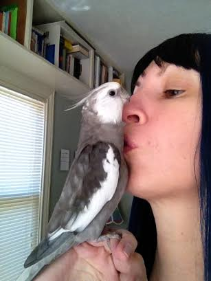 """Pearl demonstrates how to properly motivate a large featherless assistant with """"belly kisses."""""""