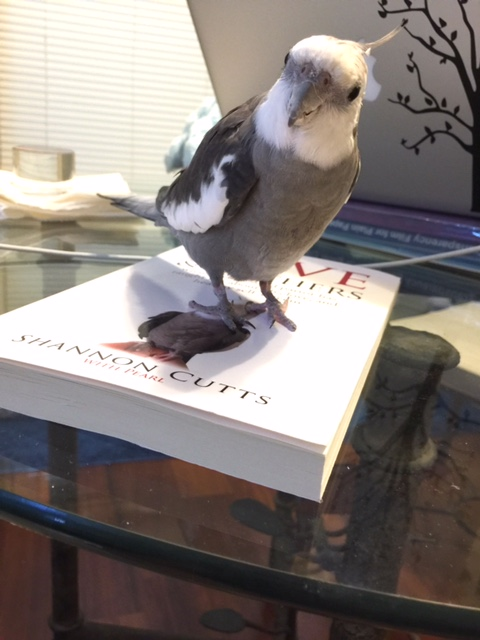 Happiness is....when you are giving away the LAST book of the year to an extra-special VIP fan and you can hardly wait to beak-o-graph the heck out of it with your mommy's blessing!