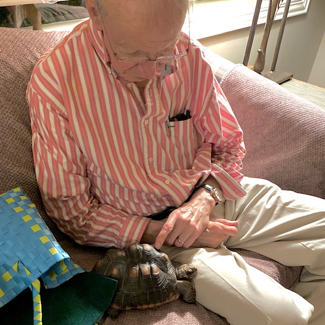 tortoise with her grandpa