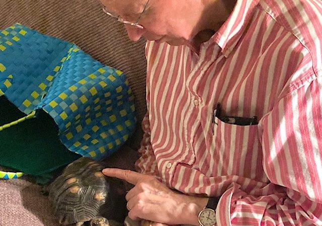 pet tortoise with grandpa