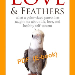 Love & Feathers book cover