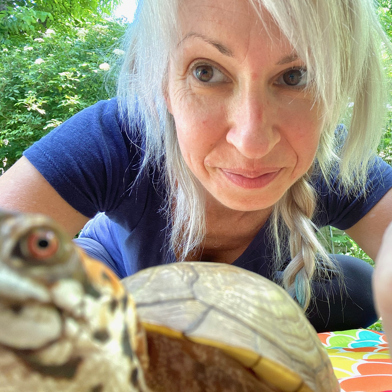 rescued box turtle with rescue mom